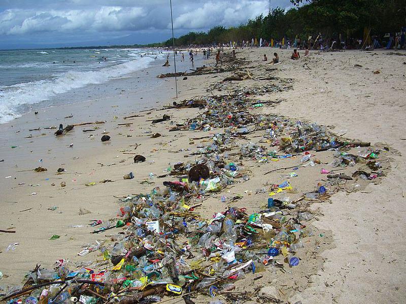 Ученые нашли самый загрязненный вмире остров
