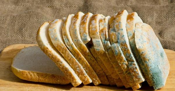 Эксперты рассказали, что делать с хлебом с плесенью