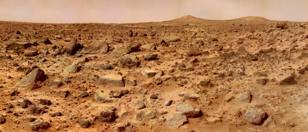 Уфолог нашел на Марсе окаменевший ствол дерева