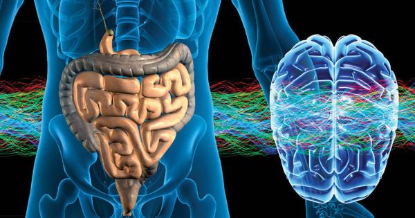 Работа кишечника влияет на психологическое состояние человека - Ученые