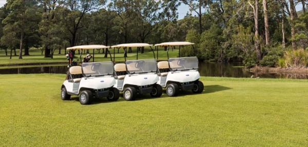 Компания Ford представила линейку автомобилей для гольфа