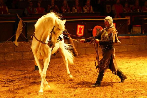 В Сочи организован рыцарский турнир