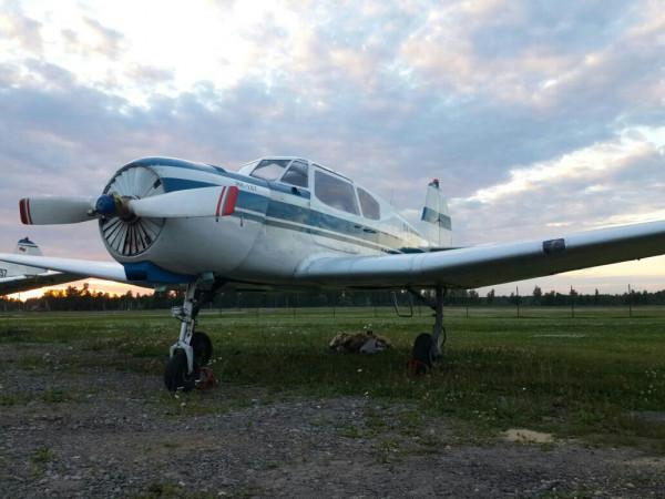 В Подмосковье погибли двое в крушении легкомоторного самолёта