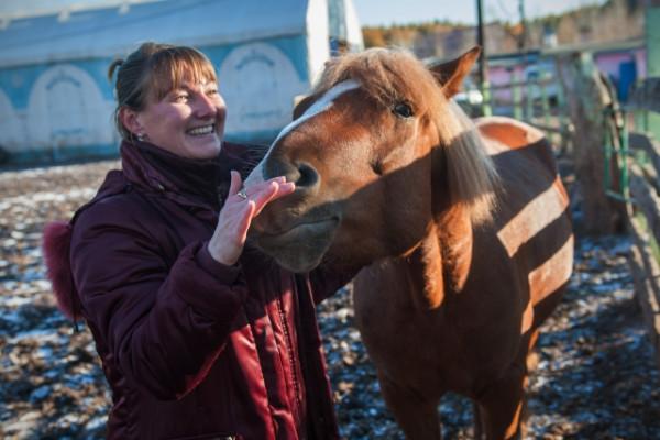 В Башкирии хулиганы разрисовали лошадь машинной краской