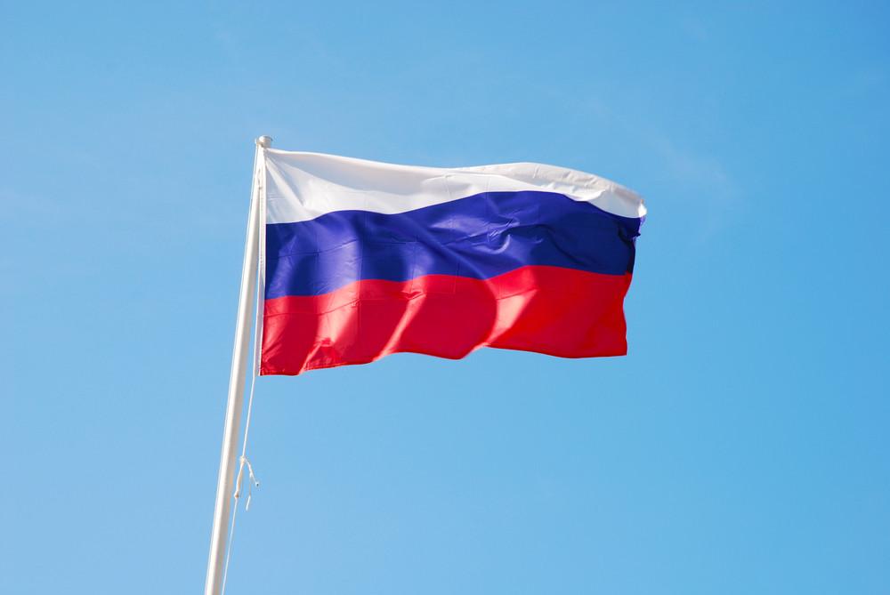 Google поздравляет сДнем Российской Федерации новым дудлом— Триколор иберезки