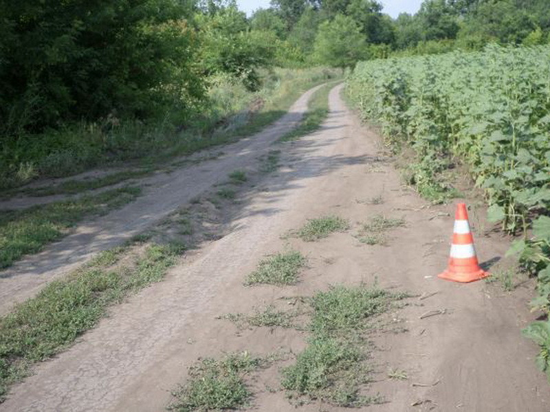 Шофёр догнал исбил подростка-велосипедиста вНижегородской области