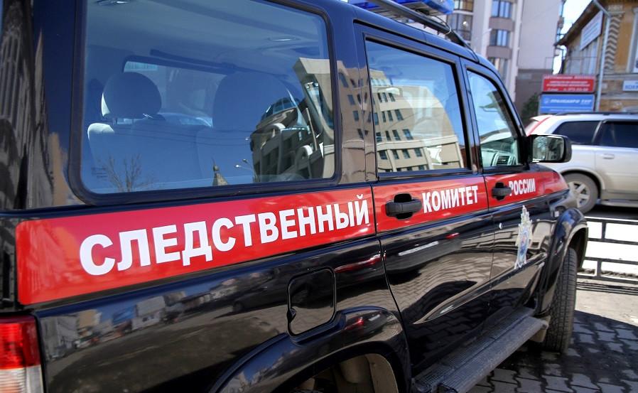 Следователи начали проверку после смерти пятилетней девушки вПодмосковье