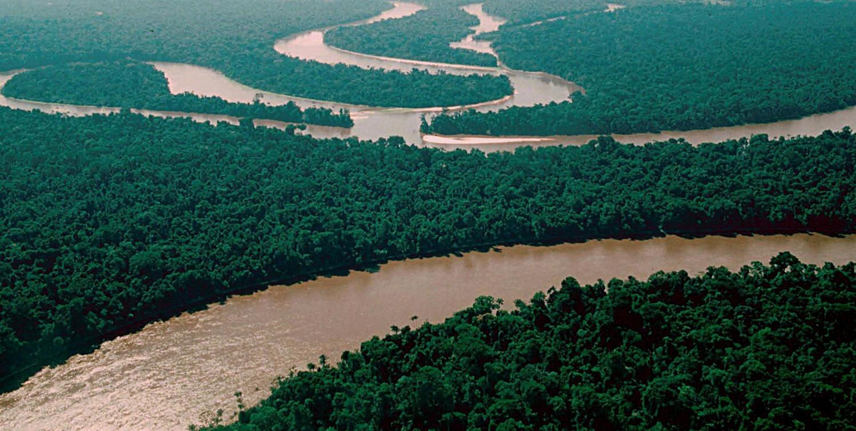 Ученые предсказали наступление катастрофы вАмазонской низменности