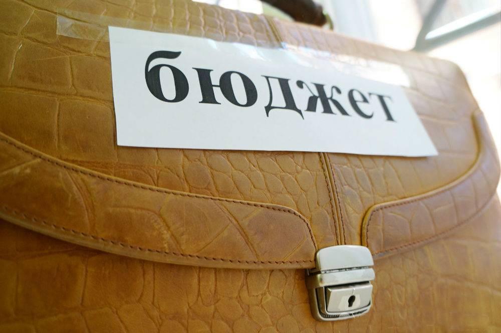 Государственная дума приняла вовтором чтении законодательный проект обизменениях вбюджет