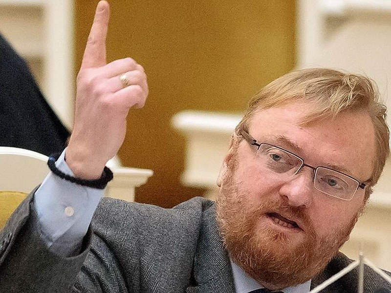 Милонов предложил придать многодетным матерям статус госслужащих