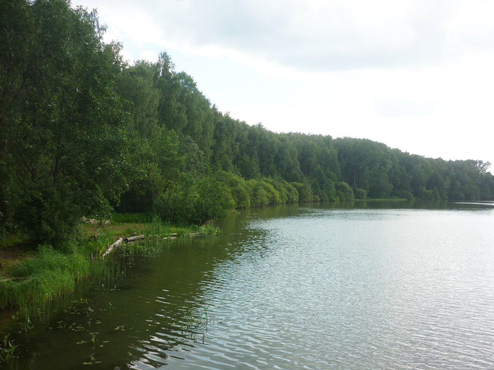Труп мужчины отыскали возере вЩелковском районе