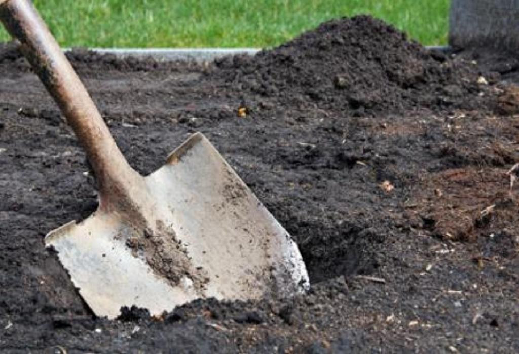 ВБашкирии женщина закопала вогороде тело избитого досмерти отца