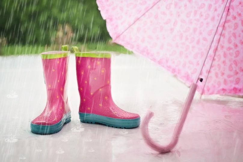 Доконца июня вОмской области будут лить дожди сгрозами