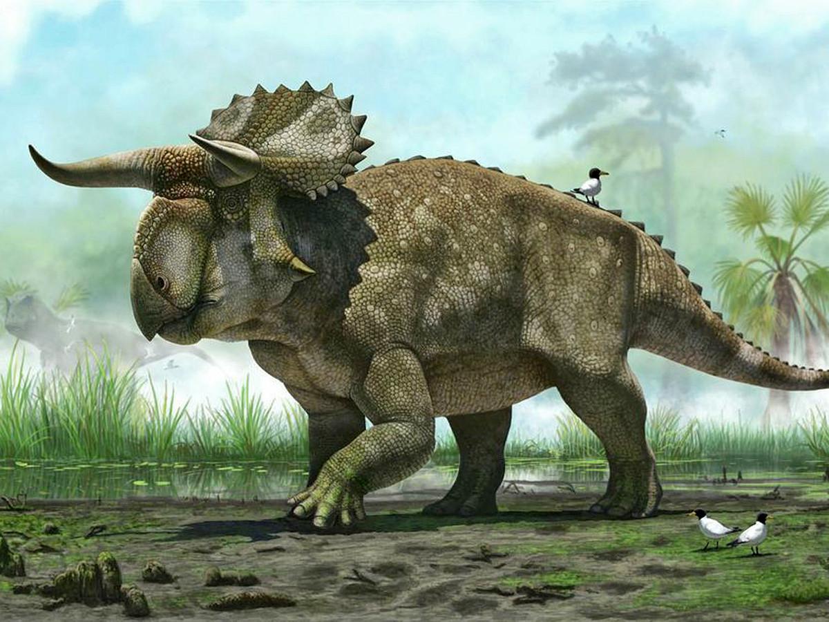 Первопричиной  вымирания динозавров стала темная материя— Ученые