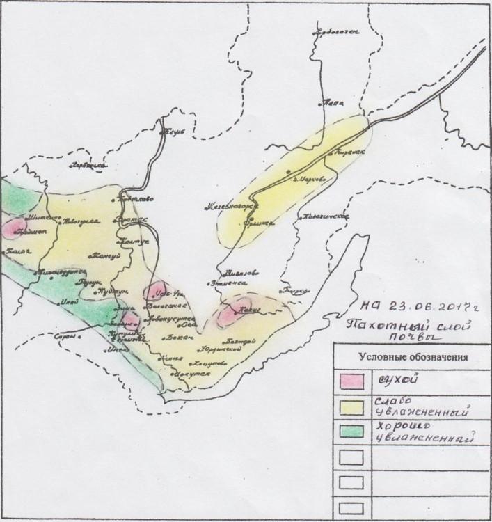 Иркутской области грозит засуха исаранча