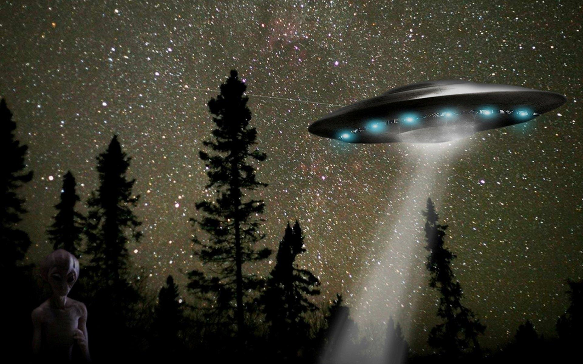 ВБелгороде зафиксировали инопланетный корабль ночью влесу