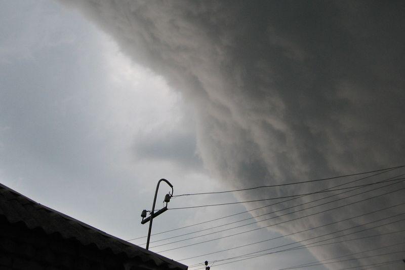 ВЧелябинске штормовой ветер сломал десятки деревьев