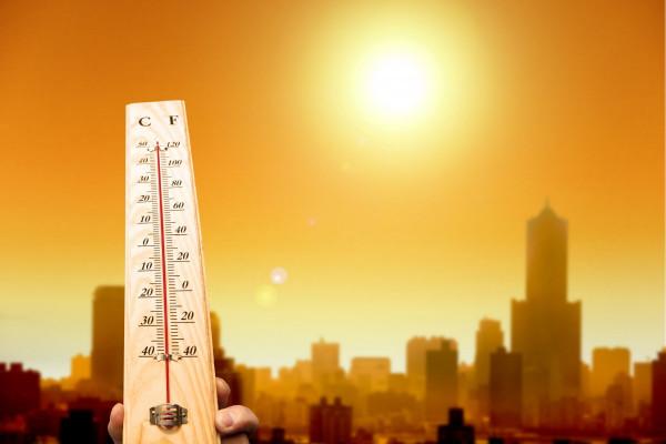 Последняя неделя июня в Волгоградской области будет жаркой