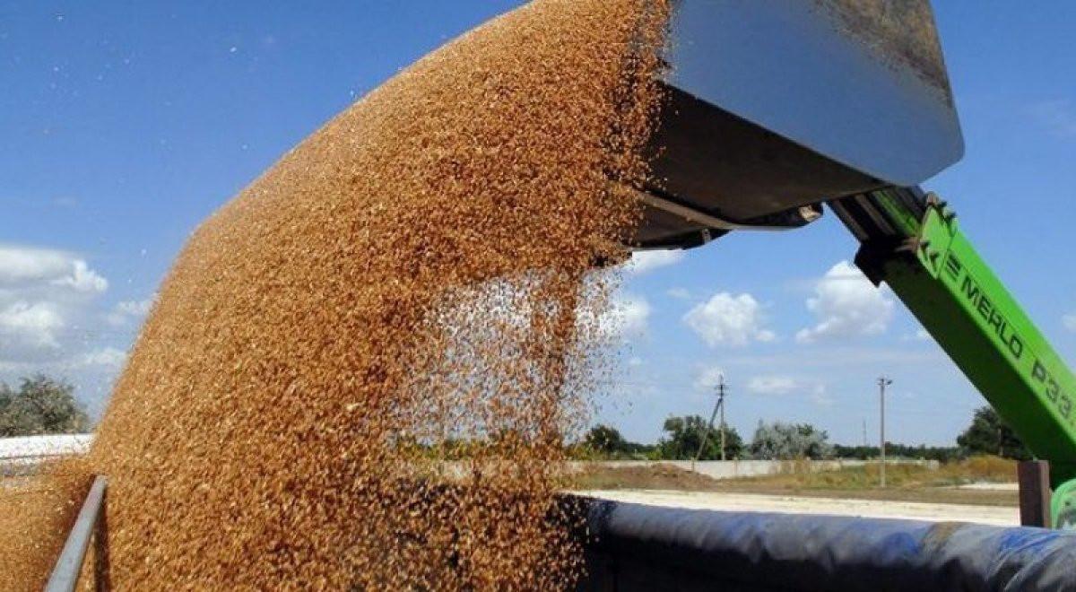 Экспорт русского сахара вырос впервом полугодии в66 раз— Минсельхоз
