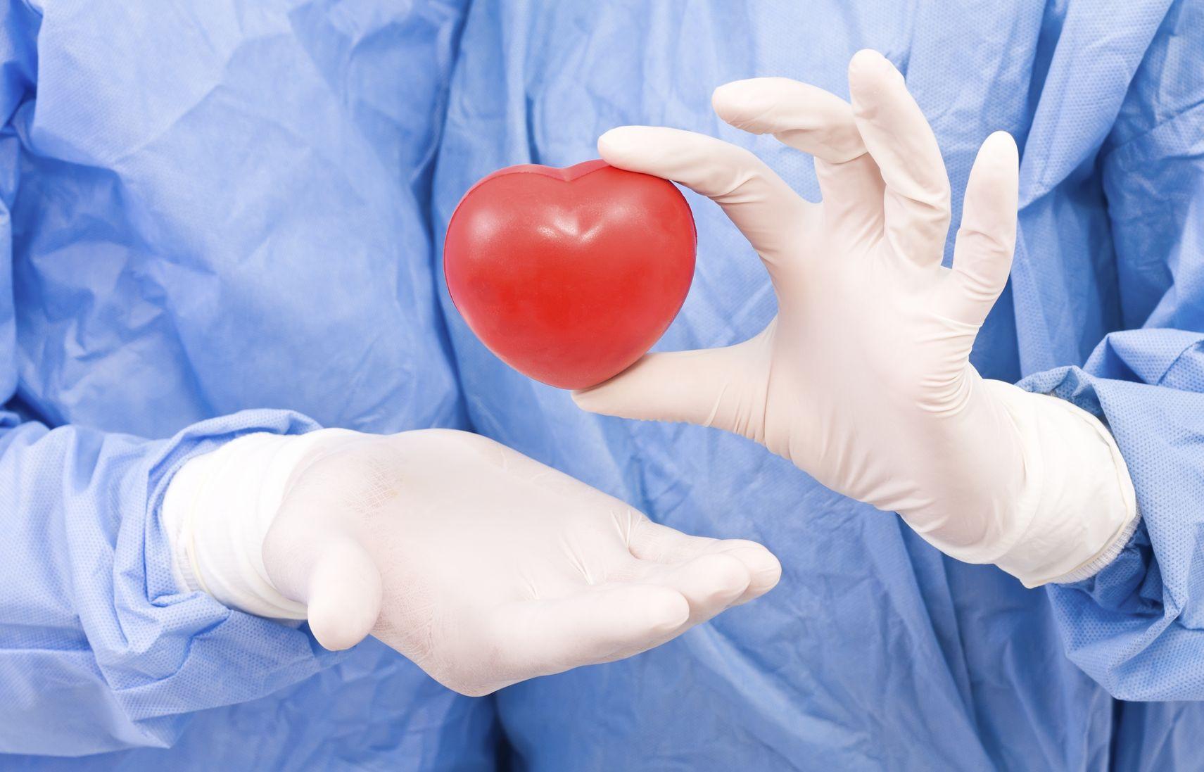 Мягкое искусственное сердце напечатали на3D-принтере