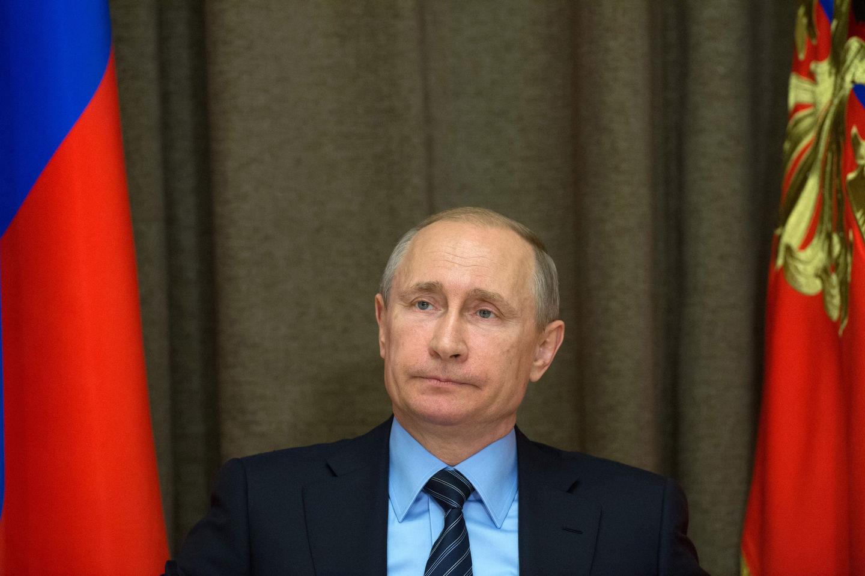 Путин еще нерешил, будетли участвовать впрезидентских выборах 2018 года