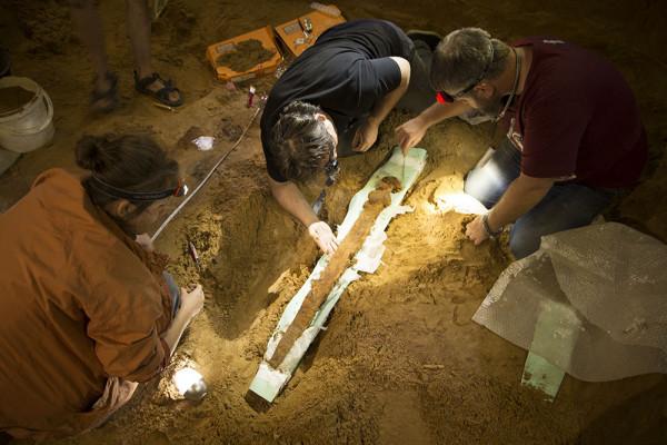 Археологи под Смоленском нашли меч дружинника Х века