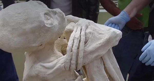 Внутри мумии из пустыни Наска нашли три яйца