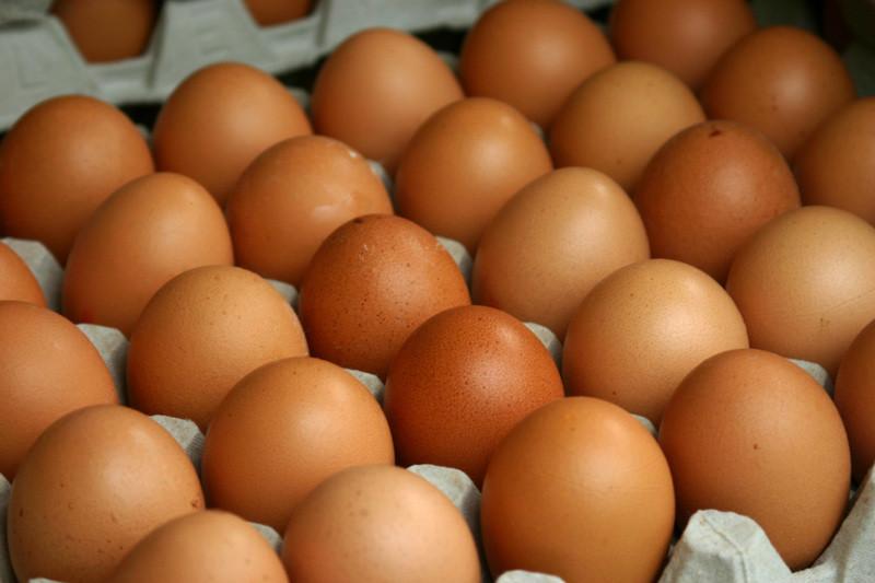 Вевропейских странах сполок магазинов изъяты миллионы ядовитых яиц