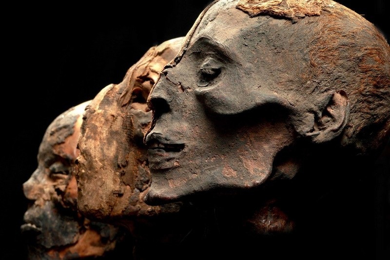 Милиция Швейцарии: Сотни мумий могут быть найдены вАльпах
