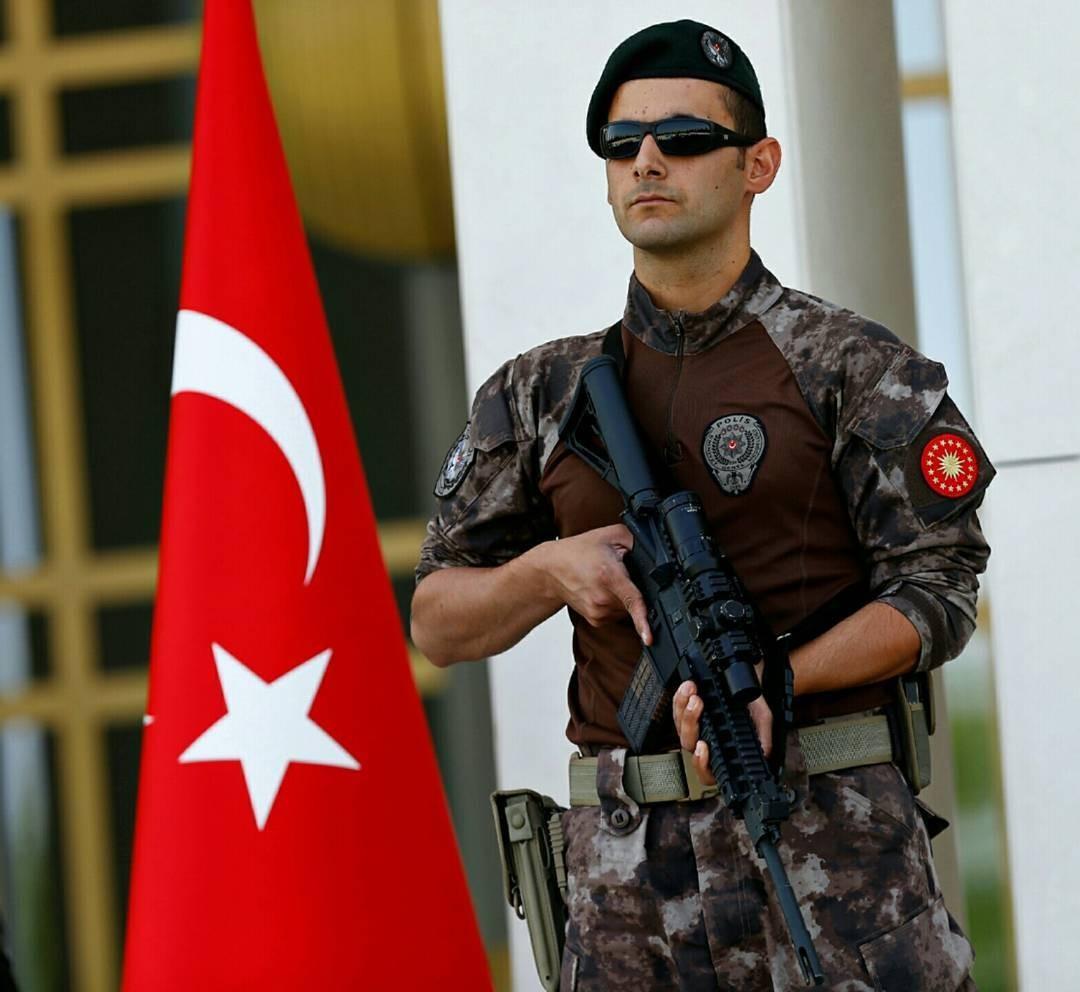 Наюго-востоке Турции задержаны трое боевиков ИГИЛ