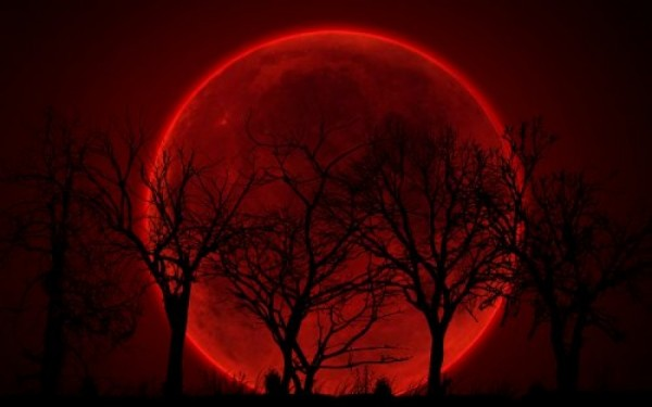 Ученые подарили слепым возможность услышать затмение Солнца 21 августа