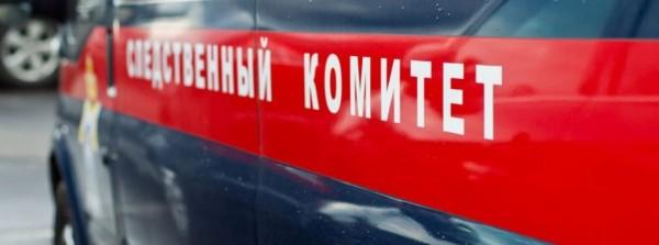 В сети появилось видео задержания подозреваемого в тройном убийстве на заводе «ГАЗ»