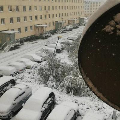 Якутию завалило аномальным снегом в августе