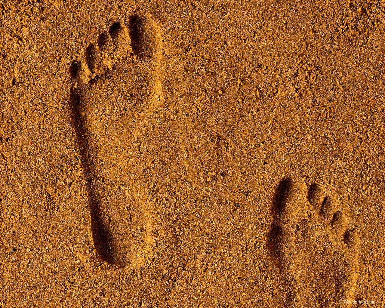 Ученые отыскали наКрите многовековой след стопы человека