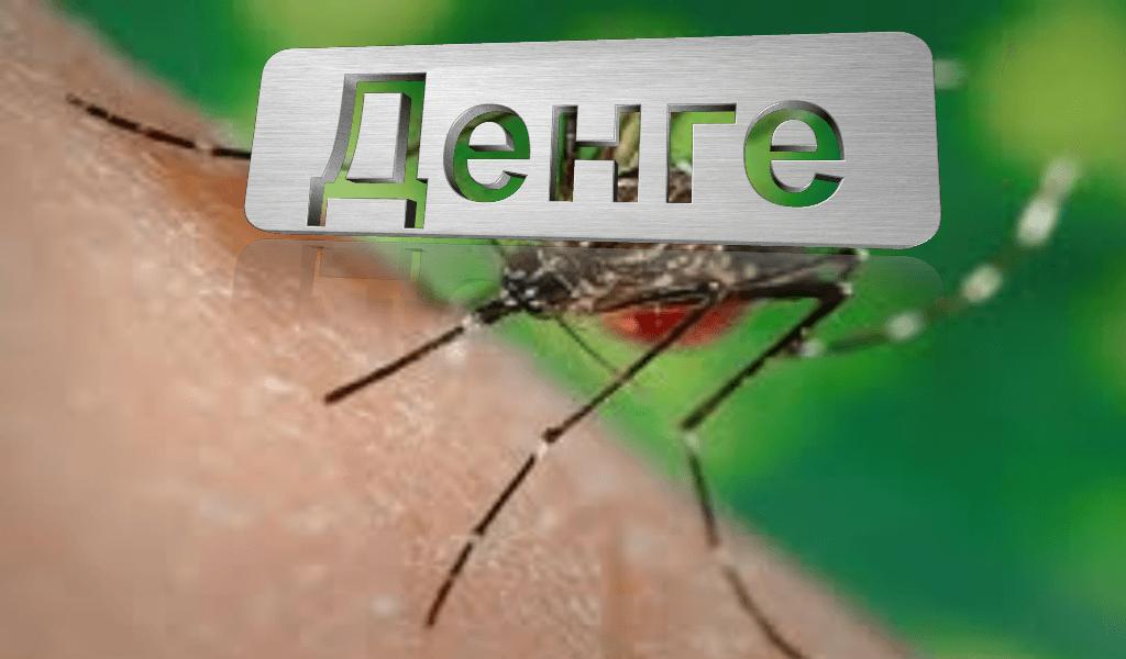 Обэпидемии лихорадки Денге в 5-ти районах Перу предупредил туристов Роспотребнадзор