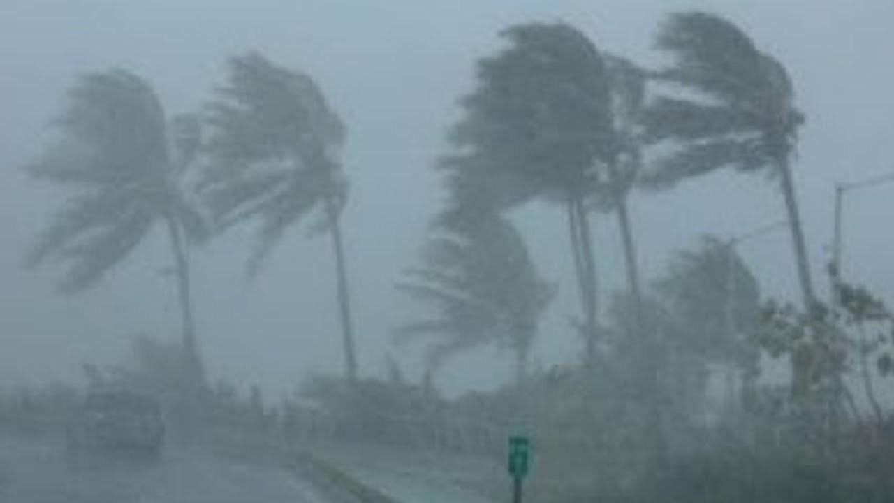 Трамп поведал онезнании существования ураганов 5-той категории