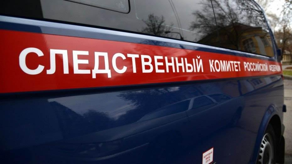 Жительница Куньинского района истязала собственных пятерых детей