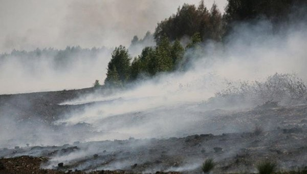 Пожарные локализовали торфяное возгорание вМосковской области