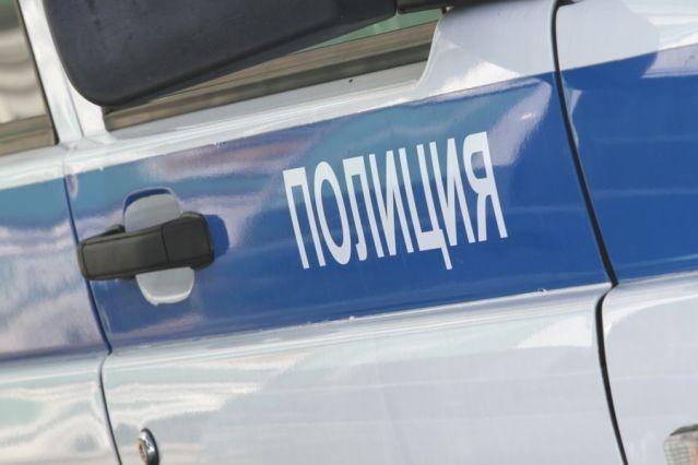 Гражданин Челябинска расчленил тело матери, чтобы получать занее пенсию