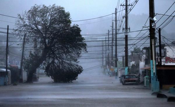 Жертвами урагана «Ирма» во Флориде стали уже три человека