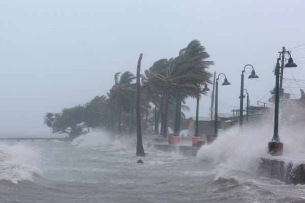 Ураган «Ирма» принёс во Флориду порывы ветра выше 200 км/час