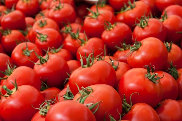 Россия возобновит поставки турецких томатов не раньше зимы