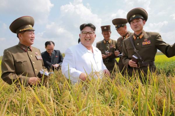 Южная Корея направит в КНДР гуманитарную помощь на 8 млн долларов