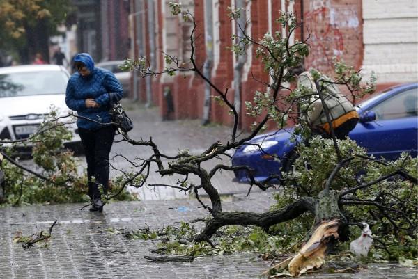 В Москве из-за урагана пострадали 6 человек