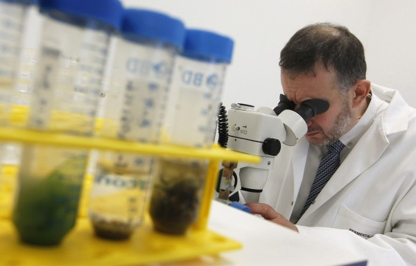 Роспотребнадзор: В Саудовской Аравии наблюдается вспышка коронавируса