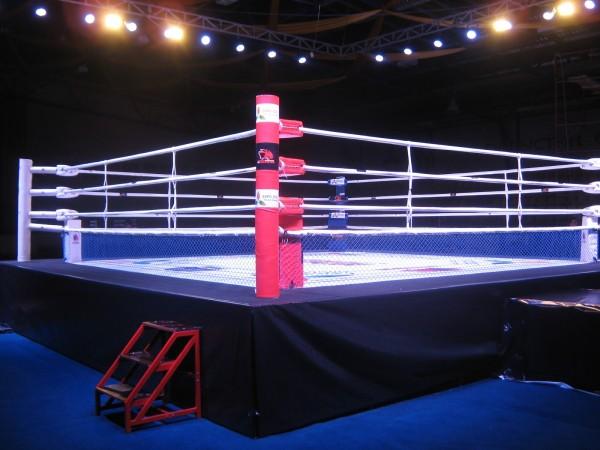 Экс-чемпион мира по боксу Ламотта скончался в 95 лет