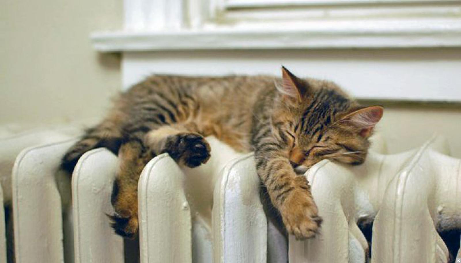 Власти столицы проинформировали, когда вдомах будет тепло