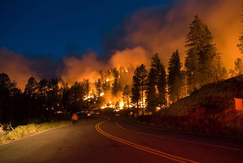 ВПортугалии министр уходит вотставку из-за лесных пожаров