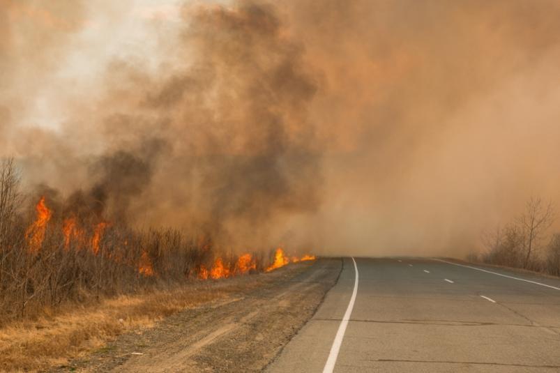 Дым сгорящих в КНР полей достиг Хабаровска иЕАО