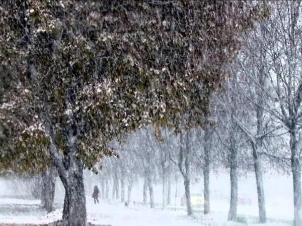 11 октября во Владивостоке впервые за 100 лет выпал снег